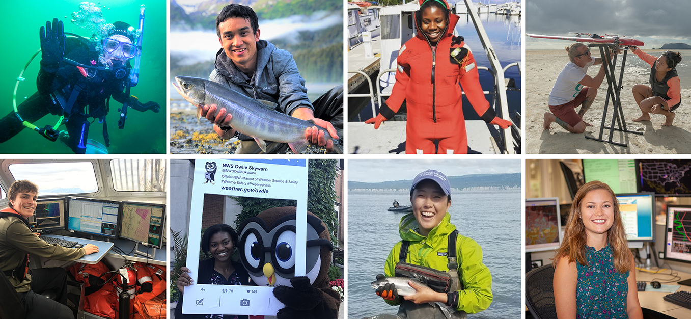 Various images of interns in the seas.